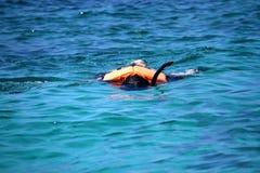 Reisender, der mit klarem Wasser in Similan-Insel schnorchelt Lizenzfreie Stockbilder