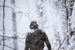 Reisender geht in einen Blizzard im Winterwald Stockfoto