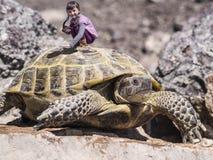 Reisendmädchen und -schildkröte Stockfoto
