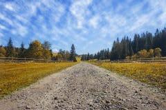 Reisestraße auf dem Feld mit gelbem Herbstgras und blauem Himmel w lizenzfreie stockbilder