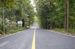 Reisestraße zum Berg mit Bäumen beide Seiten Lizenzfreie Stockbilder