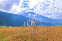 Reisfeld im Tal von Punakha mit traditionellen heiligen buddhistischen Gebetsflaggen Lizenzfreies Stockbild