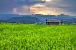 Reisfeld und -hütten auf dem Gebirgszug und dem Sonnenuntergang Stockfotos