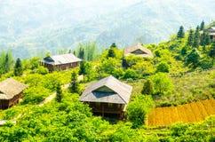 Reisfeld von Sa-PA (Vietnam) stockbild