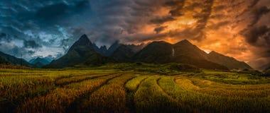 Reisfelder auf terassenförmig angelegtem mit Berg Fansipan-Hintergrund bei Sonnenuntergang stockbild