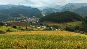 Reisfelder auf terassenförmig angelegtem von MU Cang Chai, YenBai, Vietnam Lizenzfreie Stockfotografie