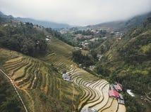 Reisfelder auf terassenf?rmig angelegtem Berg bewirtschaften Landschaft- Lao Cai-Provinz, Sapa Viet Nam, Nordwest-Vietnam lizenzfreies stockfoto