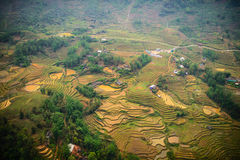 Reisfelder in den Bergen in Sa-PA, Nord-Vietnam Lizenzfreie Stockfotografie