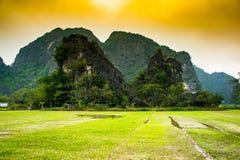 Reisfelder, Tam Coc, Ninh Binh, Vietnam gestaltet landschaftlich stockfotografie