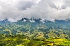 Reisfelder und -berge in den Wolken stockfoto
