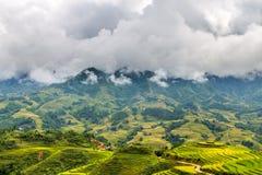 Reisfelder und -berge in den Wolken lizenzfreies stockfoto