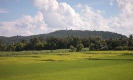 Reisfelder und Berge des großen Buddhas Stockbilder