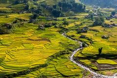 Reisfelder und ein Fluss lizenzfreies stockbild