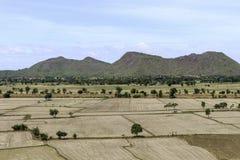 Reisfelder unfruchtbar und leer stockfotos