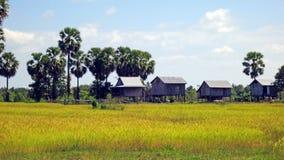 Reisfeldhütten, Kambodscha Stockbilder
