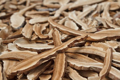 Reishi mushroom,Dry mushroom Royalty Free Stock Images