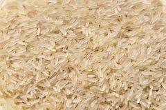 Reiskörner Stockfoto