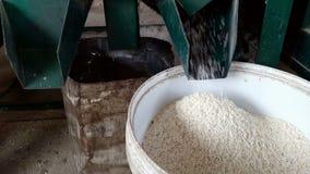 Reismühlen arbeiten stock video footage