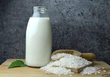 Reismilch Bio-eco organische Diät lizenzfreie stockfotografie