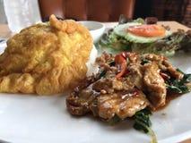 Reisspitze mit Aufruhrschweinefleisch und -basilikum Lizenzfreie Stockfotos