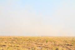 Reisstroh, das im Bauernhof für die Landwirtschaft brennt Stockbilder