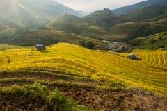 Reisterrasse auf dem moutain in Vietnam Lizenzfreies Stockbild