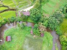 Reisterrasse Nationalpark Doi Inthanon am Chom-Zapfen-Bezirk Chiang Mai Province, Thailand in der Vogelperspektive Lizenzfreies Stockfoto