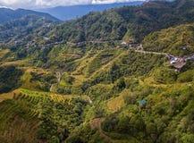 Reisterrassen an Banaue-Standpunkt stockfotografie
