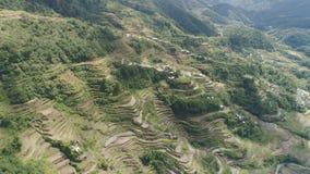 Reisterrassen in den Bergen Philippinen, Batad, Banaue stockbilder