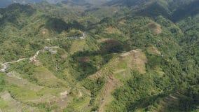 Reisterrassen in den Bergen Philippinen, Batad, Banaue lizenzfreie stockfotografie