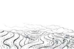 Reisterrassenfelder, Vektorskizzen-Landschaftsillustration Asiatischer erntender Landwirtschaftshintergrund Ländliche Natur China vektor abbildung