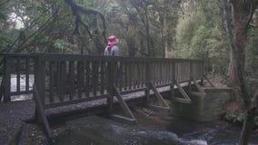 Reisvrouw die over houten brug in het bos lopen stock video