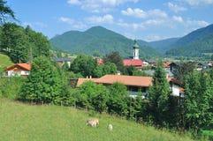 Reit im Winkl, Chiemgau, alpi bavaresi, Germania Fotografia Stock Libera da Diritti