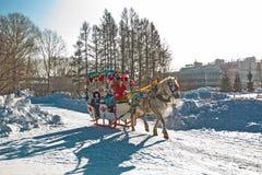 Reiten auf dem Fest des Karnevals Berdsk, Sibirien, Russ Stockfoto
