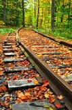 Reiten der Schienen Stockfotografie