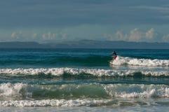 Reiten der Welle lizenzfreies stockfoto