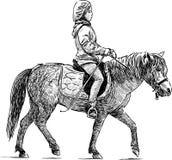 Reiten des kleinen Mädchens auf dem Pony Stockbild