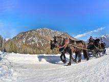 Reiten durch die Alpen in Tirol, Österreich Stockfotos