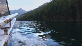 Reiten eines Schnellboots auf den Gebirgsfluss mit starkem grünem Forest On The Shores View von der Boots-Seite stock video