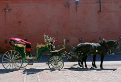 Reiten, Marrakesch marokko Lizenzfreie Stockfotografie