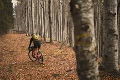 Reiten mit einer Mountainbike ausgerüstet mit Reisetaschen lizenzfreie stockbilder