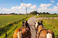 Reiten Sie durch die flämischen Felder mit Pferd und Planwagen. Stockfotografie