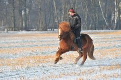 Reiten in Winter Stockfotos