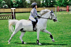 Reitenes weißes Pferd des jungen Jungen stockbilder