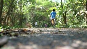 Reitenfahrräder der glücklichen Familie auf der Bahn im üppigen grünen Wald stock video