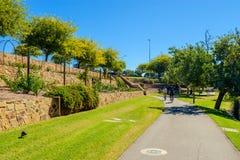 Reitenfahrräder der Leute entlang Torrens-Fluss Stockbilder
