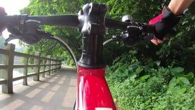 Reitenfahrrad auf Fahrrad im Park stock video