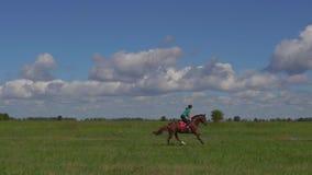 Reiter der jungen Frau, der ein Pferd durch Galopp auf das Feld reitet stock video footage