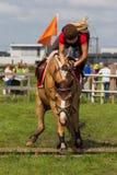 Reiter, der vom Pferd fällt Lizenzfreies Stockbild