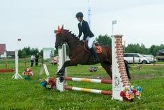 Reiter des jungen Mädchens auf einem Pferd überwindt Hindernisse Stockfotografie
